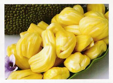 F-jackfruit ripe