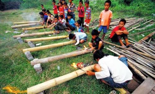 bamboo-canon